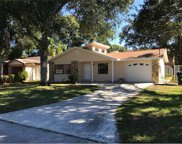 10209 N Connechusett Road, Tampa image