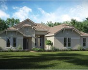 31746 Red Tail Boulevard, Sorrento image