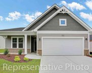 3012 Honey Clover Ct., Longs image