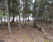17998 Little Mc Carthy Lake Road, Nashwauk image