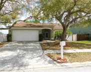 13308 Beechberry Drive, Riverview image