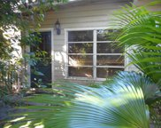 645 Wooddell Drive, Safety Harbor image