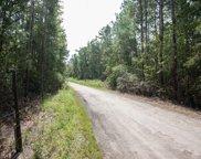 12.66 Ac Diamondback Trail, Burgaw image