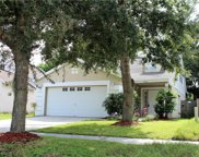 14942 Deer Meadow Drive, Lutz image