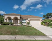 4529 Oak River Circle, Valrico image
