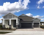 7530 Mandarin Grove Way, Winter Garden image
