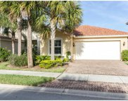 10528 Carolina Willow Dr, Fort Myers image
