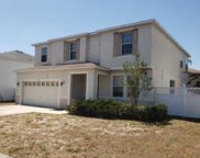 10611 Bamboo Rod Circle, Riverview image