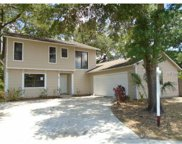 111 Timberview Drive, Safety Harbor image