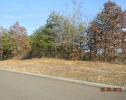 Lot 88 Red Wing Drive, Vonore image