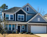 306 Hollow Cove Road, Chapin image