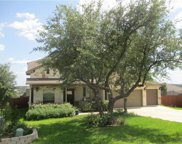 17701 Linkwood Dr, Dripping Springs image