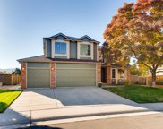 10105 Silver Maple Road, Highlands Ranch image