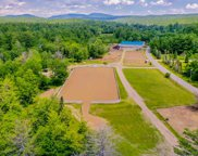 317 Goose Pond Road, Canaan image