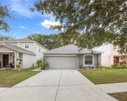 13821 Gentle Woods Avenue, Riverview image