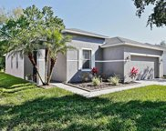 16836 Hawkridge Road, Lithia image