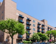 1000 East 53Rd Street Unit 503, Chicago image