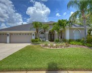 12107 Clear Harbor Drive, Tampa image