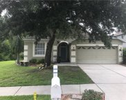 10323 Birdwatch Drive, Tampa image