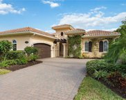 9294 Chiasso Cove Ct, Naples image