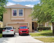10213 Avelar Ridge Drive, Riverview image