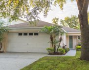1715 Mosaic Forest Drive, Seffner image