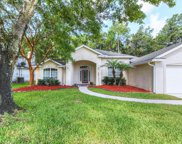 1618 SANDY SPRINGS DR, Fleming Island image