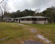 5014 Clewis Avenue, Tampa image