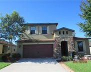 847 Crooked Branch Drive, Clermont image