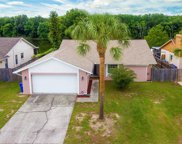 12710 Trucious Place, Tampa image
