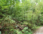 Parcel 053.00 Moosewood Spring Way, Hartford image