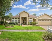 18712 Forest Glen Court, Tampa image