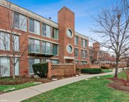 1030 Arbor Lane Unit #203, Northfield image
