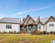 1301 Florida Rd, Pell City image