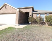 3611 Cotton Patch, Killeen image
