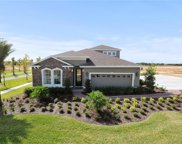 826 Birch Hollow Drive, Ocoee image