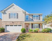 1139  Spicewood Pines Road, Fort Mill image