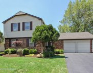851 Silver Rock Lane, Buffalo Grove image