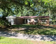 11488 PINE FOREST CT, Jacksonville image