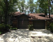 581 WELLS LANDING DR, Orange Park image
