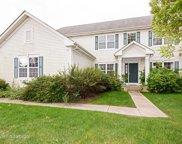 8047 Cripple Creek Drive, Long Grove image