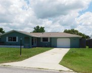 10124 Holly Drive, Port Richey image