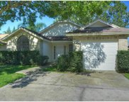 12847 Coverdale Drive, Tampa image