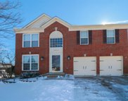 3820 Golden Meadow  Court, Batavia Twp image