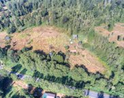 15316 Pioneer Wy E, Orting image