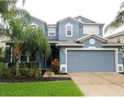 2339 Black Lake Boulevard, Winter Garden image