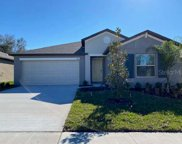 13011 Majestic Garden Lane, Riverview image