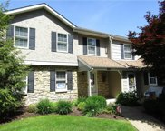 253 Roscommon, Peters Twp image