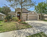 1407 Emerald Hill Way, Valrico image