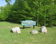 11410 Berry Creek Valley Rd, #13, Petoskey image